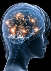 The Miracle of Transcendence and the Human Brain